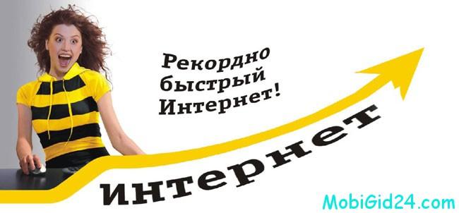 Основания для дезактивации услуги оператором