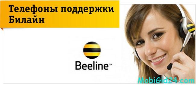 Служба поддержки интернета Билайн