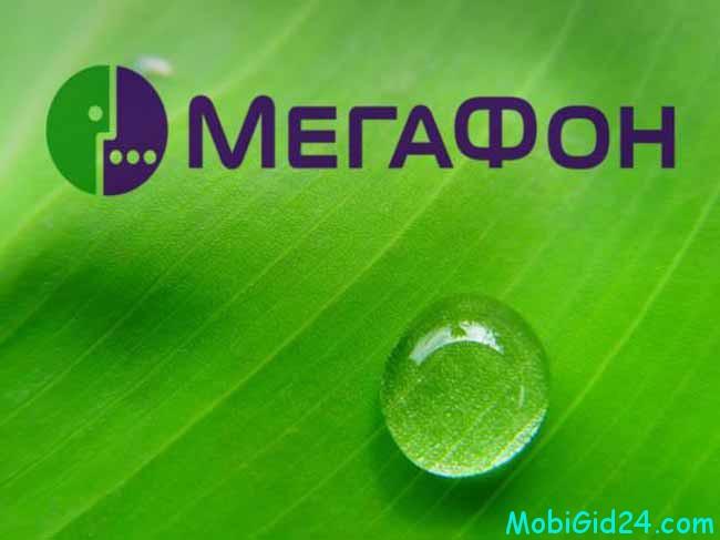 большинство отдает предпочтение услугам от Мегафон